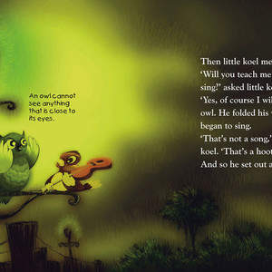 Childrens-book-Koel-finds-his-Song-04.jpg